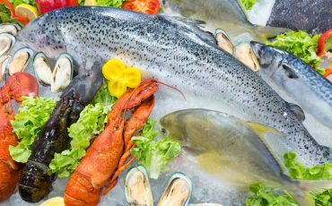 Commercial fishing industry calls crisis talks on resource access