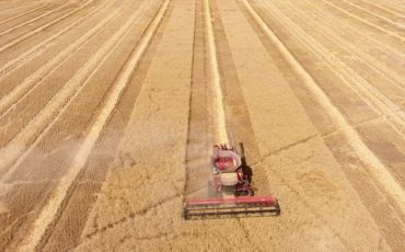 Drone footage captured by SEA Condamine grower Brad Forsyth on his property about 20km outside of Monto, heading towards Biloela