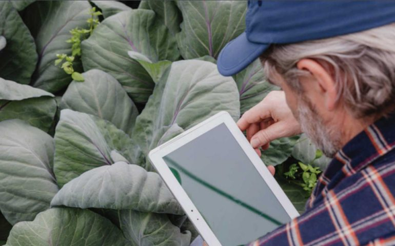 tech in ag leading agriculture 29