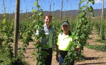 Horticulture leads Australian agriculture