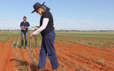 Research to boost profitability of sodic soils