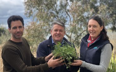 Soil specialists to help Otway and Heytesbury dairy farms