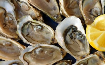 Australia has huge potential for shellfish aquaculture