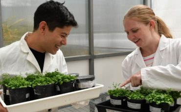 Plant-research-Scimex