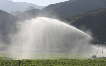 Irrigation helps beat the heat