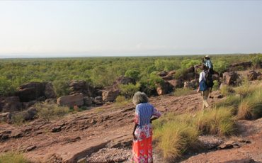 Ancient plant foods discovered in Arnhem Land