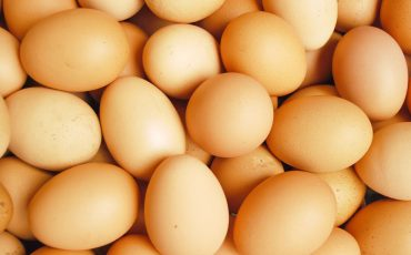 Chicken surprise leads to research prize