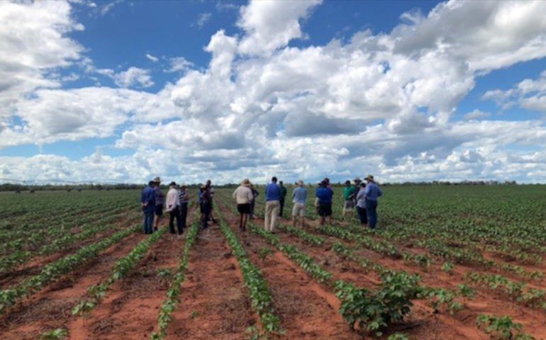 USQ's Associate Professor Keith Pembleton said his team will contribute its cropping system modelling expertise to the project.