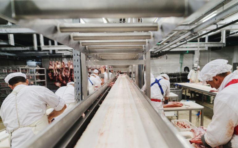 meat production plant stock image
