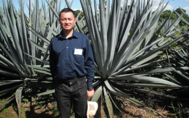 Associate Professor Daniel Tan from University of Sydney with agave plants (1)
