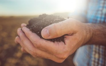 soil-agriculture-land stock image