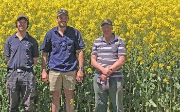 Blowhard farmer grows huge canola crop