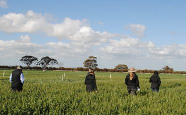 Unique opportunity to help deliver frost outcomes