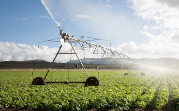 Agriculture: Crop Irrigation