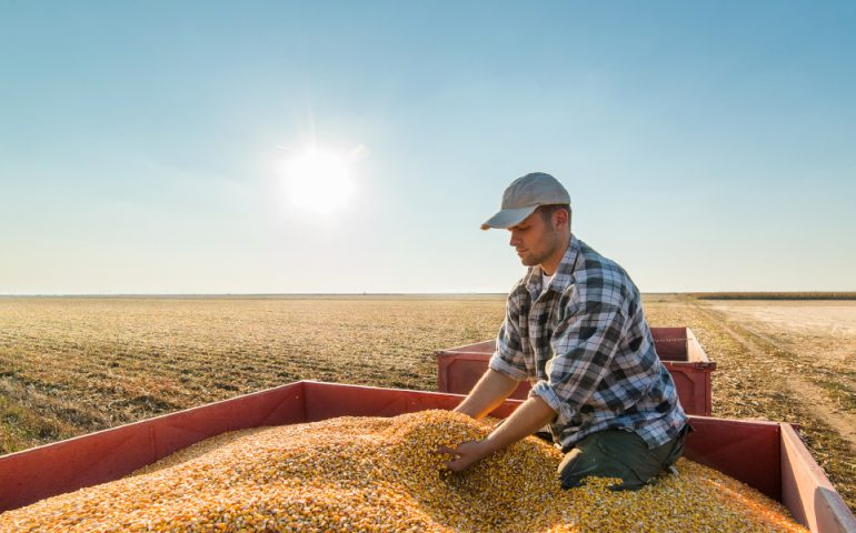 Australian grains production and jobs in regional areas