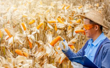 Grains Australia launches with leaders on board