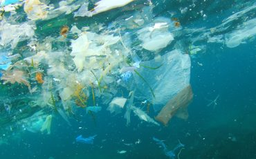 'Extraordinary efforts' needed to stem the tide of plastic pollution