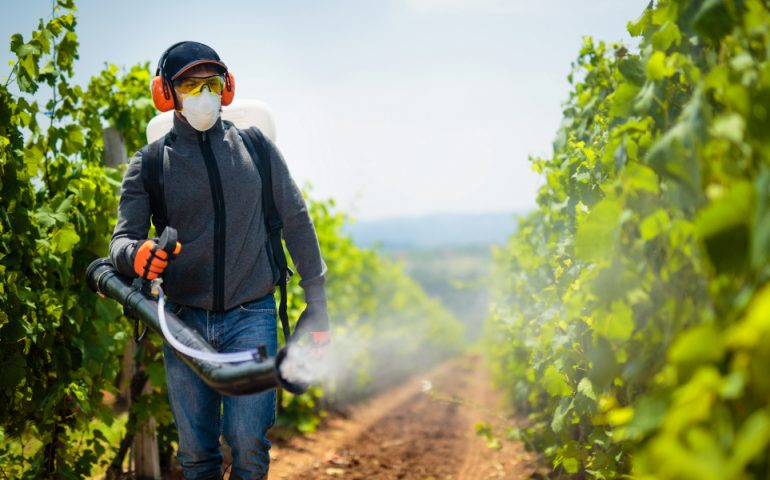 pesticide pollution
